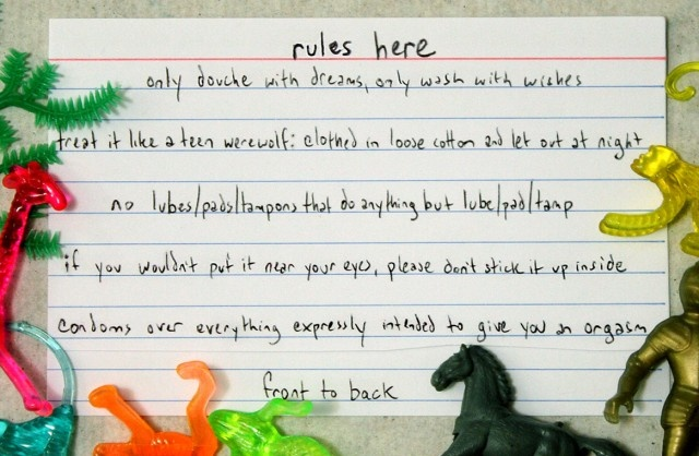 Rules for the Lady Bits     (If I had a Mom to go to for this stuff, it still wouldn't be as sassy as this blog)
