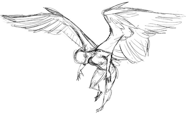 working on wing things