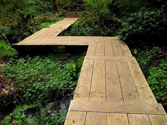 best 25 wooden walkways ideas on pinterest pallet walkway pallet path and outdoor wood steps. Black Bedroom Furniture Sets. Home Design Ideas