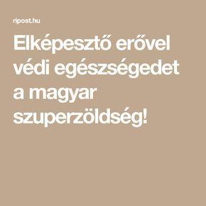 Elképesztő erővel védi egészségedet a magyar szuperzöldség!