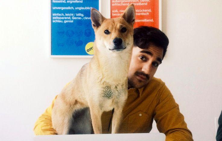 Holt euch einen Hund ins Büro  Karsten Schmehl von Buzzfeed Deutschland