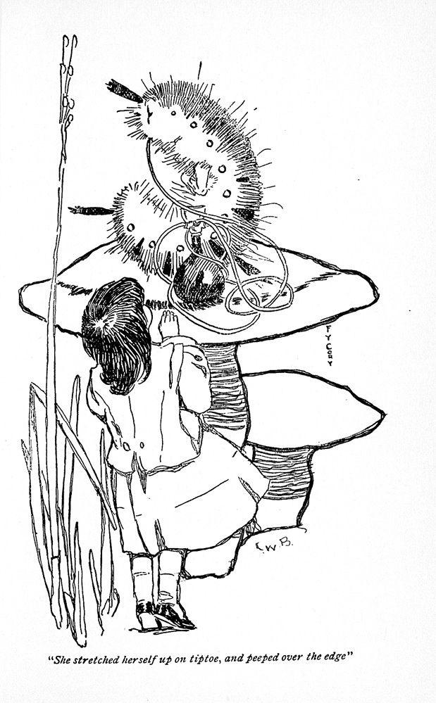 Mejores 316 imágenes de Alice - Caterpillar en Pinterest   Alicia en ...