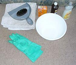 Pet Odor Carpet Cleaner 1 Quart Warm Water 1 4 C