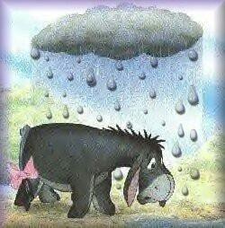 Eeyore: Eeyore Feeling, Pooh, Acre Woods ️, Eeyore Poor Thing, Gift Cards, Disney Challenge, Eeyore Gloomy