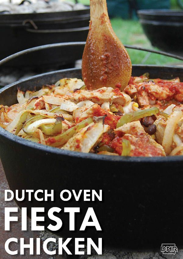 444 best images about outdoor and wild recipes on for Dutch oven chicken recipes for camping