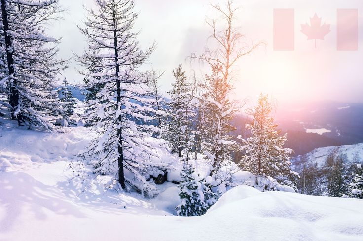 Take a look at these eight unique facts about our country's coldest season!