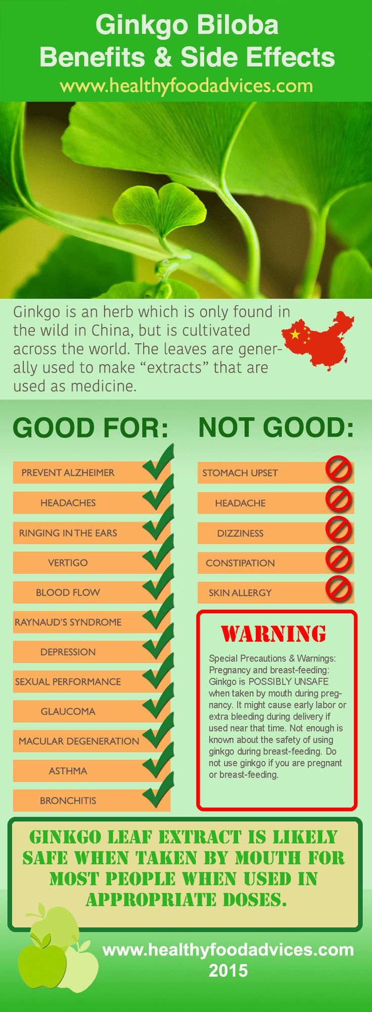Chinese health herbal medicine supplement - Ginkgo Is An Herb Which Is Only Found In The Wild In China But Is