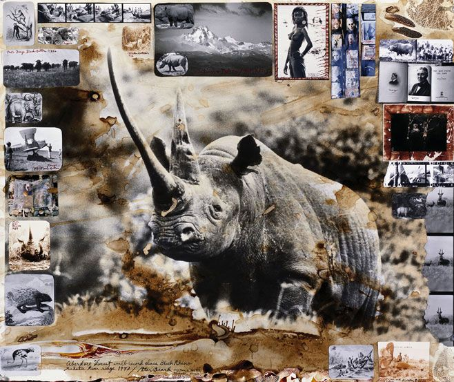 peter beard photos - Google Search