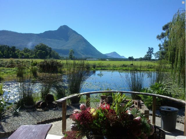 TSITSIKAMMA - Mountain Breeze Log Cabins are situated just off the main N2 road on the famous Garden Route. The 4 self catering log cabins (Sleep 2, 3 or 4) are located on a working Protea Farm set in the heart of the Tsitsikamma. #where2stay #southafrica