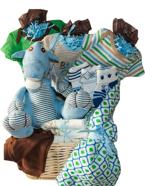 40 best baby gift baskets toronto images on pinterest baby gift baby boy dino baby gift basket toronto canada negle Gallery