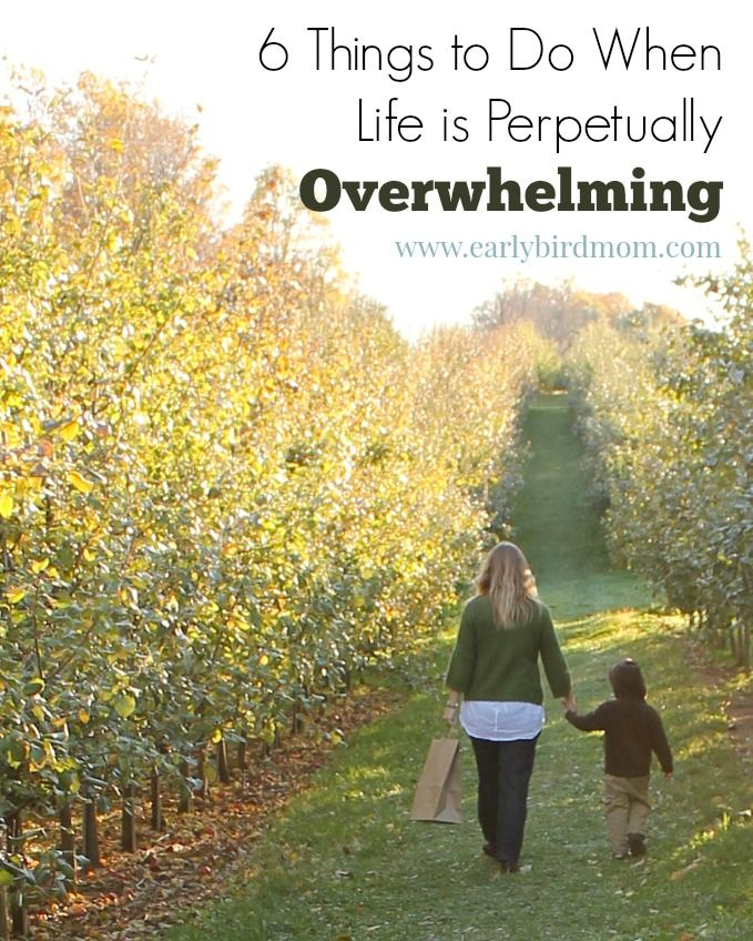 Have you ever had a time when you were hanging onto your very last nerve for days at at time? Doing these 6 things has really helped me recover from being overwhelmed and become a happier, more peaceful person.