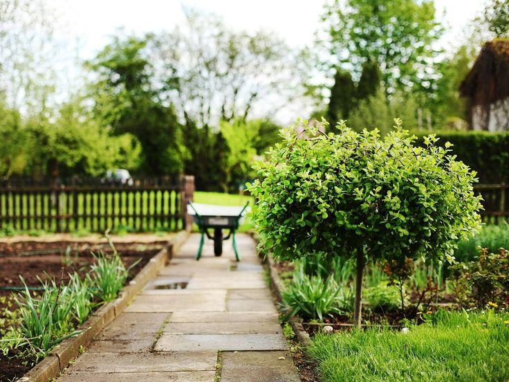 Oltre 25 fantastiche idee su regole di casa su pinterest - Erba sintetica da giardino ...