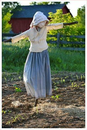 Gentili donzelle e bonari omaccioni, ogni orto che si rispetti ha il suo guardiano impagliato, sentinella attenta a...