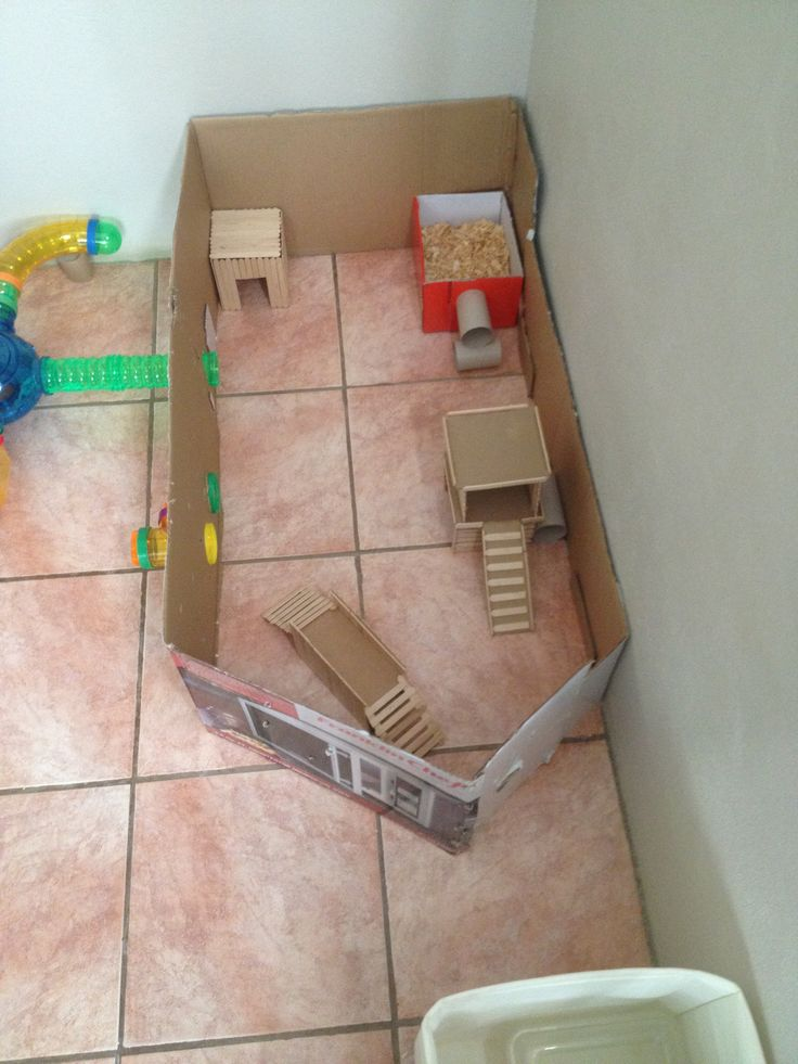 Diy hamster playpen For when we move and I can have a permanent spot for her playpen.