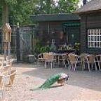 Eerst een mooie wandeling maken in het Amsterdamse bos. Daarna neerstrijken op het heerlijke terras van boerderij Meerzicht voor een hapje en drankje! Wie wordt daar nou niet blij van. Pannenkoeken, broodjes, soepjes, appeltaart, drankjes... aan jou de keus!  Een heerlijke plek om met het gezin te genieten in het Amsterdamse bos. Klimmen, klauteren en zwieren in de naastgelegen speeltuin, struinen door de boomgaard of kroelen met de dieren in de dierenweide. Het kan hier allemaal.