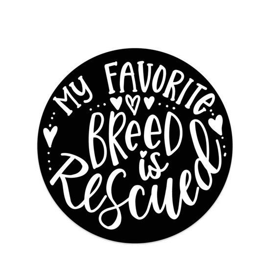 Rescue Is My Favorite Breed Bumper Sticker Rescue Dog//Cat Vinyl Window Decal