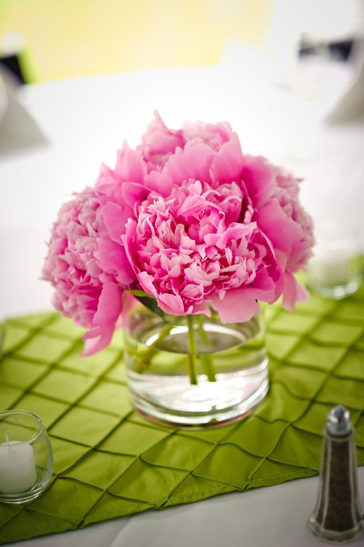 Best images about pink and green on pinterest