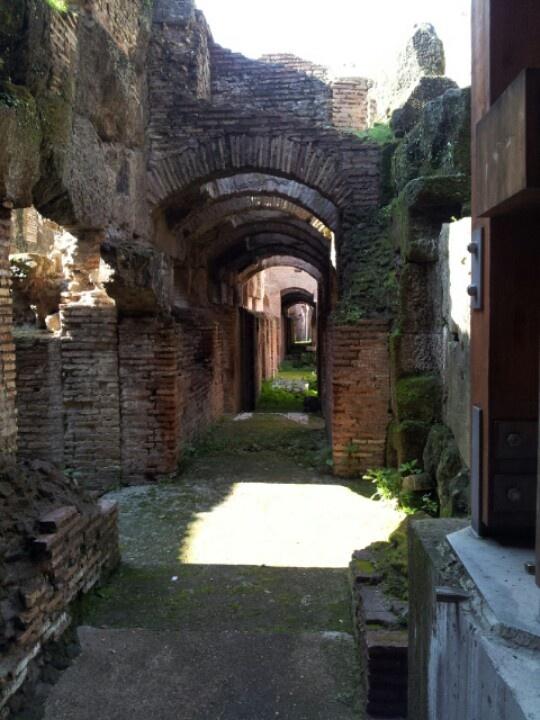 I cunicoli dove si muovevano i Gladiatori prima di entrare nell'Arena