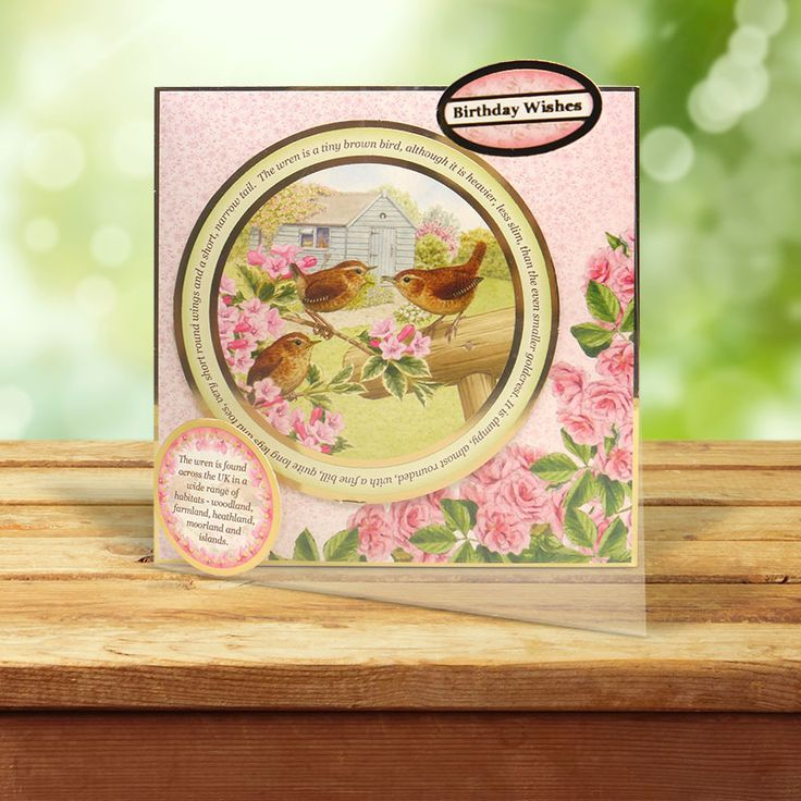 This card was made using the 'Tawny Owl & Wren' topper set from the Birds of Britain Collection