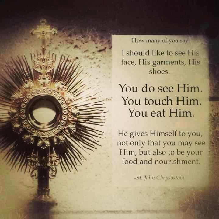 Catholic Quotes On Love: 100 Best JESUCRISTO PAN DE VIDA ETERNA Images On Pinterest