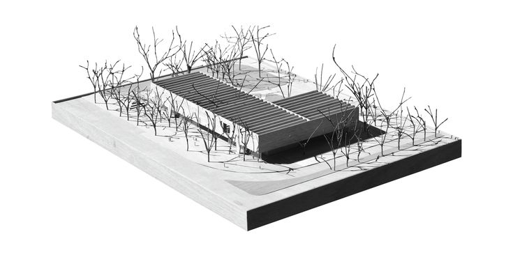 Bauhaus Museum Finalist Acts as a Gate Between City and Park,Physical Model. Image Courtesy of Guerra De Rossa Arquitectos + Pedro Livni Arquitecto