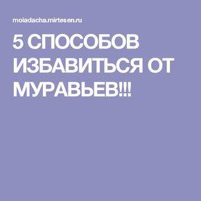 5 СПОСОБОВ ИЗБАВИТЬСЯ ОТ МУРАВЬЕВ!!!