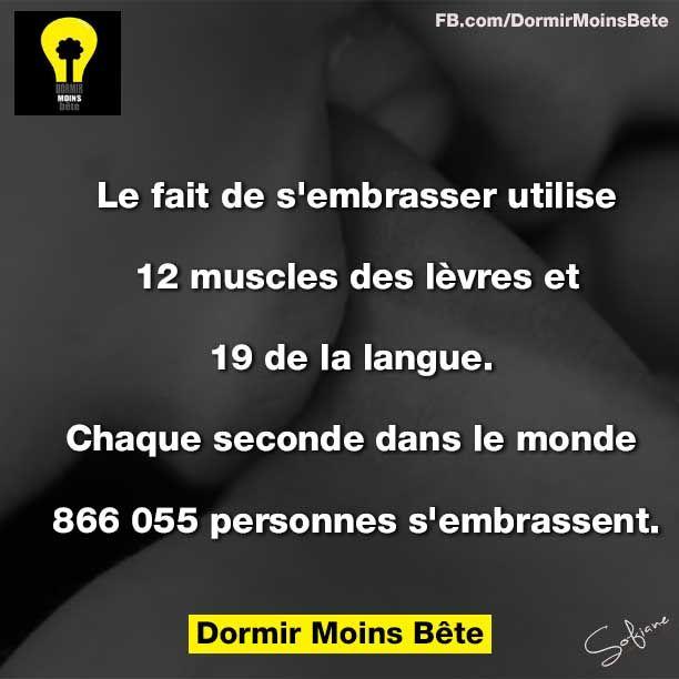 le fait de s'embrasser utilise 12 muscles des lèvres et 19 de la langue. Chaque seconde dans le monde, 888.055 personnes s'embrassent.