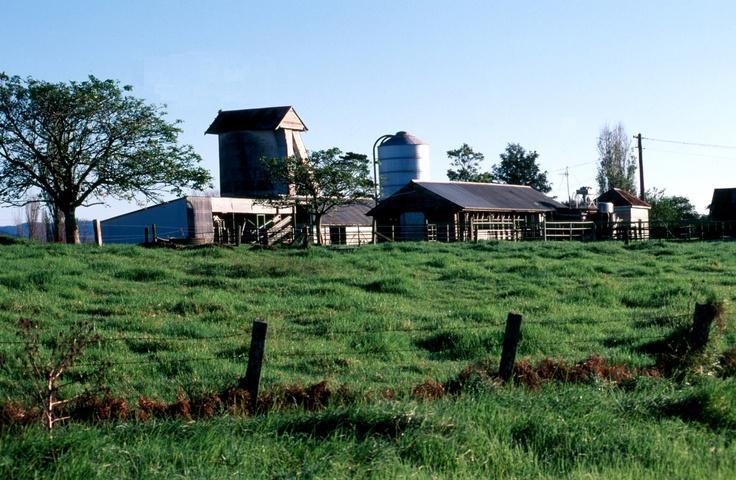 Milton - old dairy
