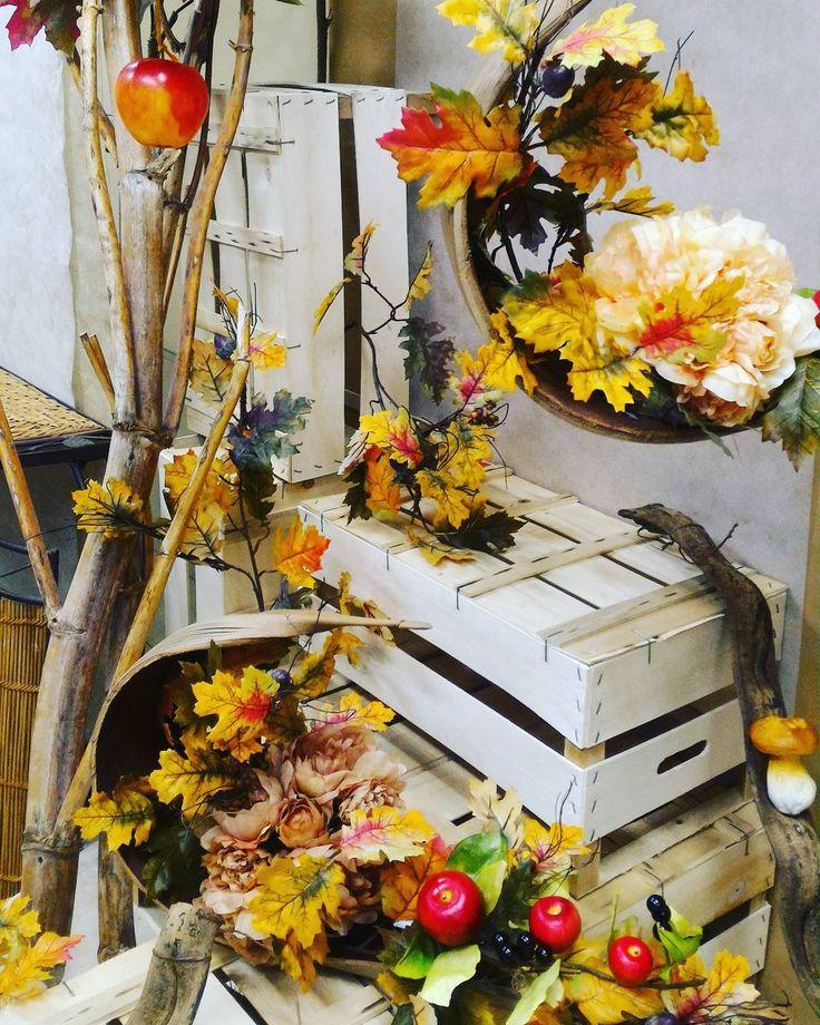 Vetrine autunnali idee xt87 regardsdefemmes - Decorazioni d autunno ...