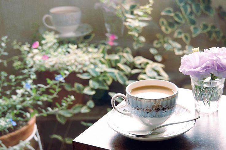 夏の午後は、お気に入りの美しい食器で一休みするに限る。  ・  大人のロマンスマダムは、忙しい自慢をするより、まずは休むこと。美しいものを見て心までリラックスして、1日の後半戦に挑みたい。  ・  つまるところ、忙しい中にもこういう粋な時間を持てるかどうかが、生活感の有り無しの差になってあらわれるのです☺︎  ・  #ロマンスマダム   #プリンセスナタリー  #ロマンスガーデン   #アラフォー   #アラフォーコーデ   #アラフォーライフ   #アラフィフ   #アラフィフコーデ   #アラフィフライフ   #ウェッジウッド   #アレクサンドラ   #イメージコンサルタント  #happy   #コーヒータイム