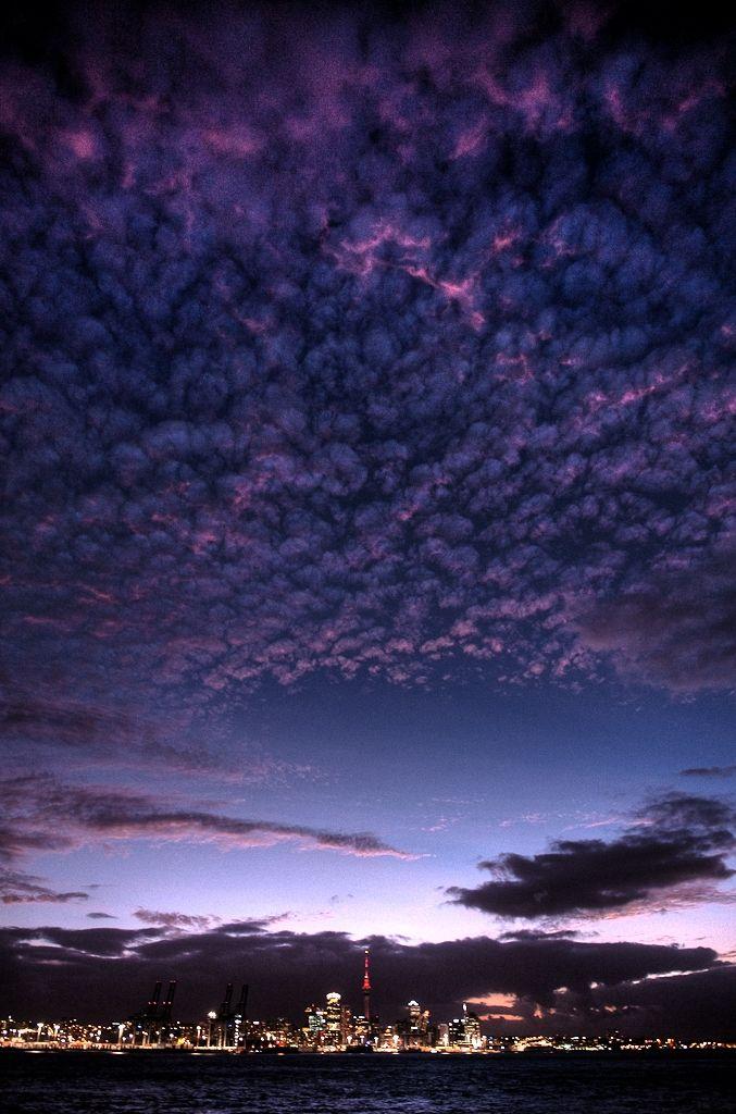 Evening twilight in Auckland, New Zealand.