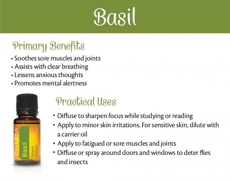 Basil Essential Oil Uses