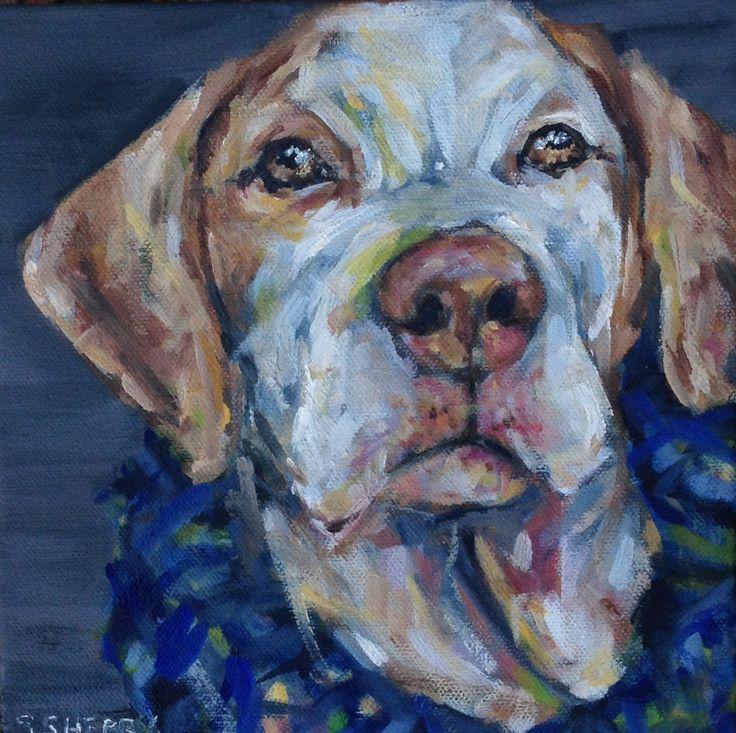 Day 24, Dog 24 — Samantha Sherry