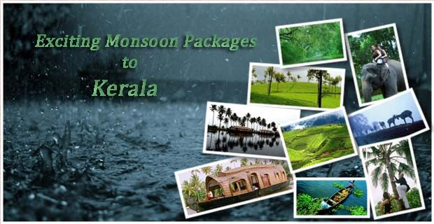 Celebrate the Monsoon in Kerala with our #MonsoonSpecialPackages!! Visiting Kerala in the monsoon season will unfold many bounties of nature.With backwaters bordering the valleys, greenery all lover and soothing climate, Kerala stands as one of the best destinations to visit in monsoon season. For More: https://lnkd.in/ePUv4MU #MonsoonKeralaPackage #KeralaMonsoonPackage #MonsoonPackage #KeralaPackage #SpecialMonsoonPackage #KeralaHolidays #MonsoonHolidays