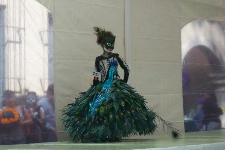 #peacock #mexico #disfraz #color