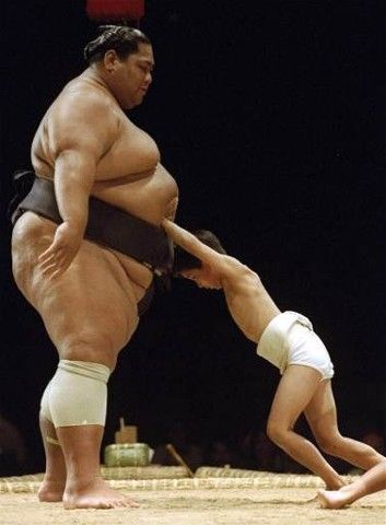 Konishiki Yasokichi (b.1963) a Hawaiian-born Japanese–Samoan sumo wrestler, was the first foreign-born grand champion, or yokozuna.