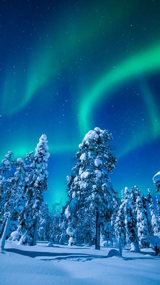 44 Winter Iphone Wallpaper Ideas Winter Backgrounds Free Download