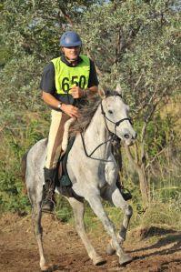 7 Characteristics of a great endurance horse