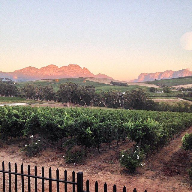 Cape Town South Africa in the winelands - Stellenbosch @theglobediary