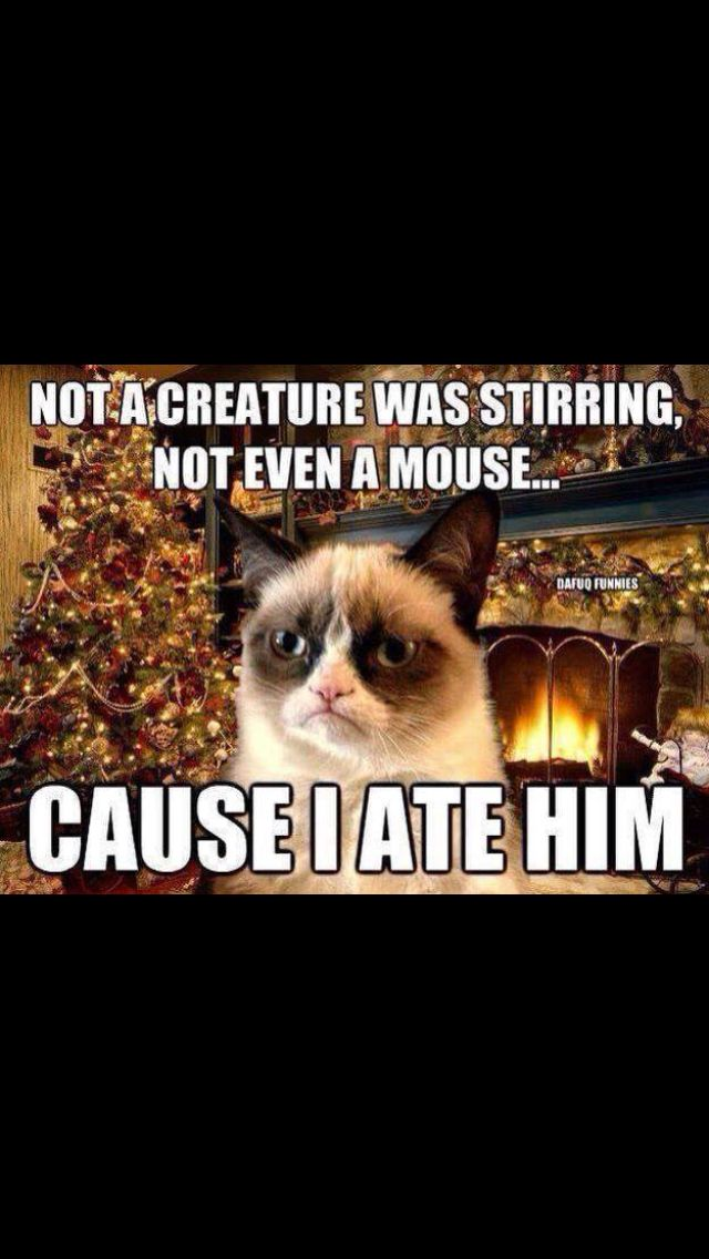 Not a creature was stirring, not even a mouse. Cause I ate him