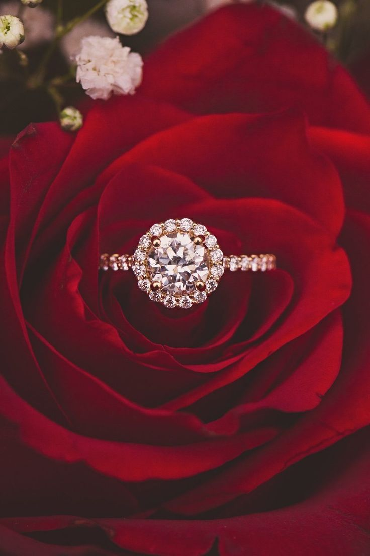 So in love with the halo on this stunning engagement ring!