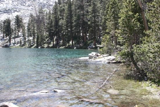Cold Springs Campground, Sequoia National Park, East of Three Rivers