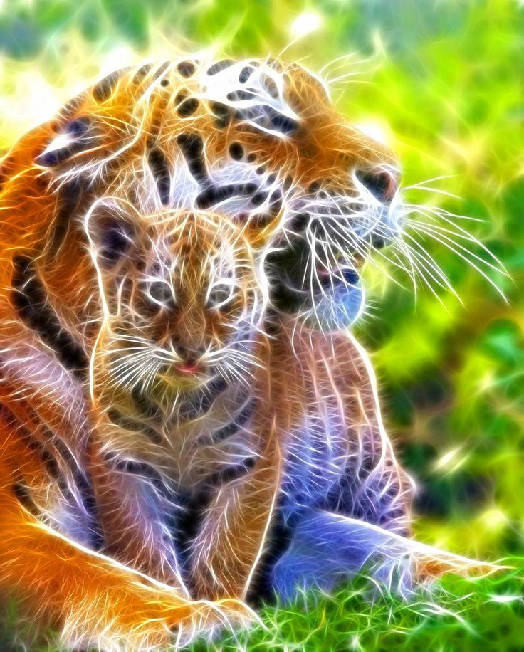 tiger fractal cats e - photo #9