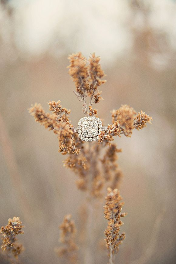 ring shot idea - Winter Bridal Shoot by Stephanie Sunderland - via Magnolia Rouge