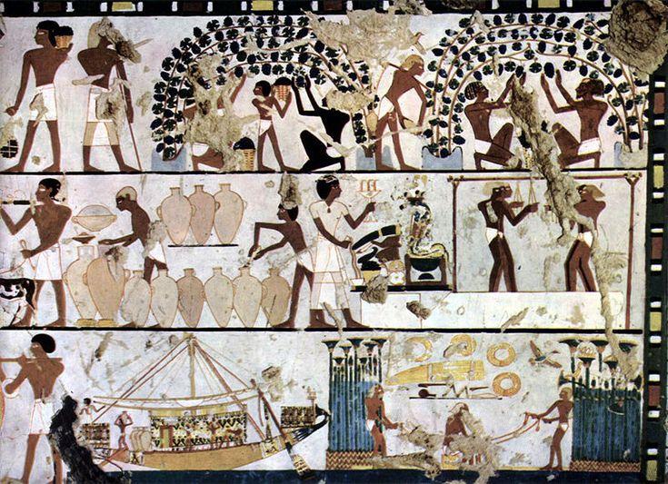 HISTORIAS DE VINO - 03 - ANTIGUO EGIPTO  - La primera evidencia arqueológica de machacado de las uvas con intención de extraer vino se puede observar en las representaciones del reinado de Udimu (ca. 3000 a. C.)17 En el Antiguo Egipto la cerveza era más popular que el vino.18 Las primeras variedades semi-silvestres de uva con las que se elaboraron vinos eran rojas y producían vino tinto, pero los egipcios tuvieron la posibilidad de hacer crecer una variedad mutada que permitía...