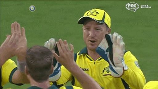 This incident that just made cricket 5000% more exciting. | The 41 Most Awkward Things That Have Ever Happened