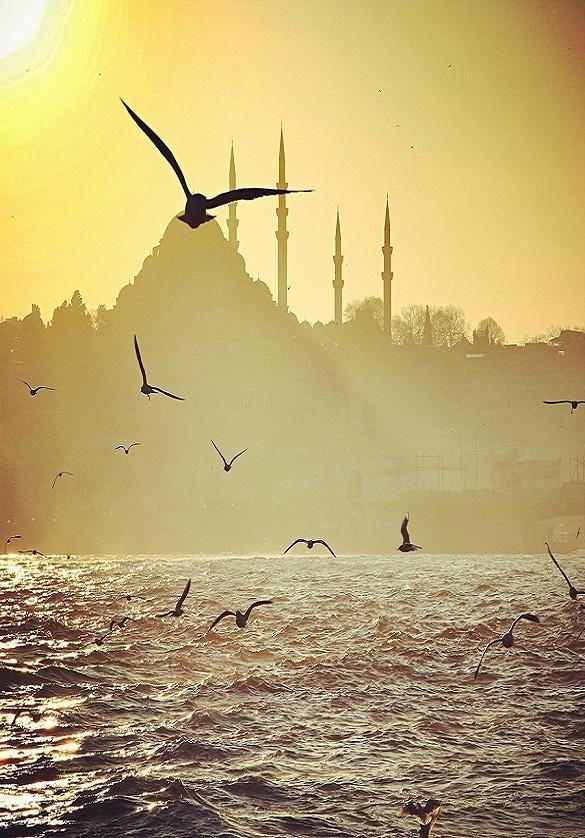 Keyifli bir cuma geçirmeniz dileğiyle. Mutlu cumalar :) #Günaydın #Turkey #İstanbul