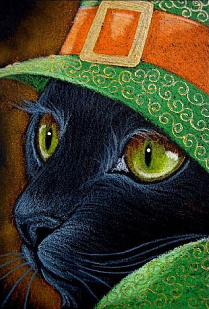 Black Cat Photography Halloween Animal Wall Art Instant Digital -  black cat halloween par cyra r cancel