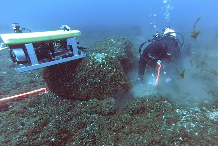 Prehistoric caribou hunting structure discovered beneath Lake Huron