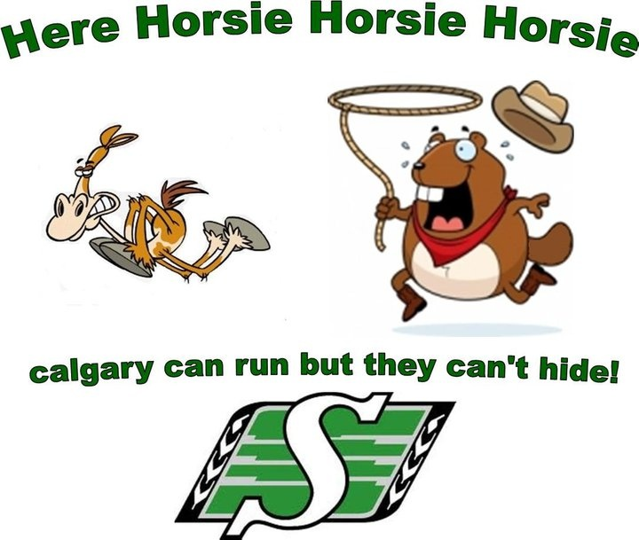 Here horsie horsie horsie